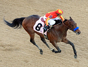 Secret Circle wins the 2012 Rebel Stakes.