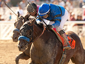 Secret Compass wins the 2013 Chandelier Stakes.