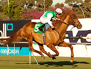 Seek Again wins the Hollywood Derby.