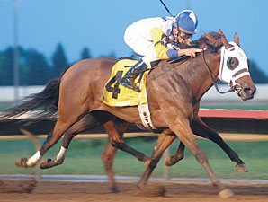 Seeking the Title wins the 2010 Iowa Oaks.