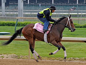 Seeking the Title at Churchill Downs on April 22, 2010.