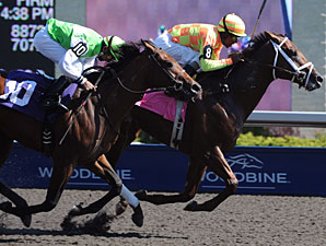 Sensational Slam wins the 2010 Clarendon Stakes.