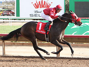 Set'n On Ready wins the 2012 Arizona Juvenile Fillies Stakes.
