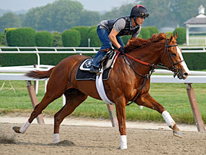 Shackleford - Belmont, June 1, 2011.