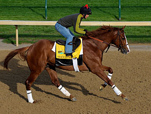 Shackleford - Churchill Downs April 28, 2010.