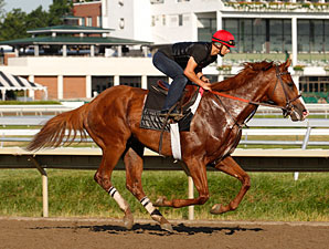 Shackleford - Monmouth Park, July 30, 2011.