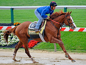 Shackleford - Pimlico May 19, 2011.