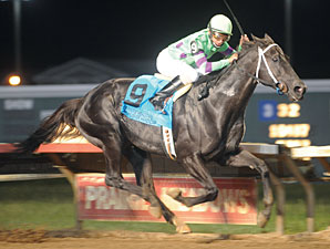 Shadowbdancing wins the 2010 Prairie Meadows Cornhusker.