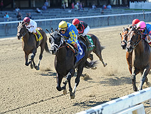 Shanghai Bobby wins the 2013 Aljamin Stakes.