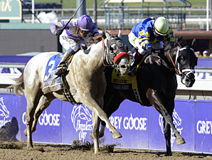 Shanghai Bobby wins the 2012 Breeders' Cup Juvenile.