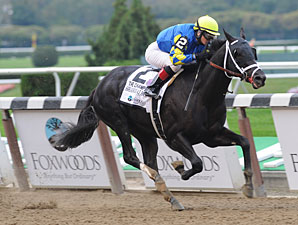 Shanghai Bobby wins the 2012 Champagne.