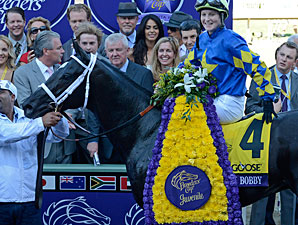 Shanghai Bobby after winning the Breeders' Cup Juvenile.
