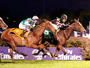 Shared Account wins the 2010 Breeders' Cup Filly & Mare Turf.
