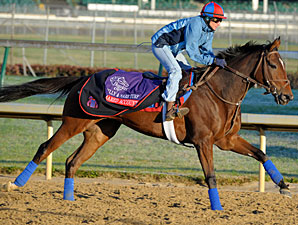 Shared Account, Churchill Downs, Nov 1, 2011