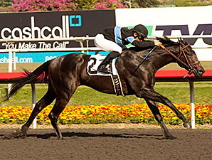 Shared Belief wins the Hollywood Prevue Stakes.