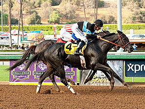 Shared Belief wins the 2014 Awesome Again.