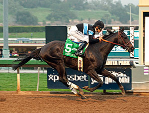 Shared Belief wins the 2015 San Antonio..