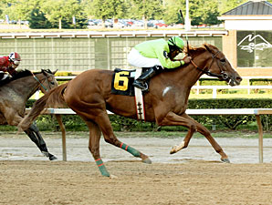 Sharp Sally wins the 2013 Firecracker Stakes.
