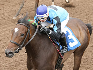 She Can Ski wins the Northern Lights Debutante.