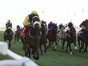 Shea Shea wins the 2013 Meydan Sprint.