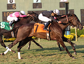 She's All In wins the 2011 River Cities Stakes.