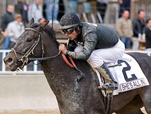 She's All In wins the 2012 Sixty Sails Handicap.