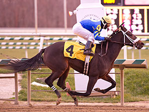 She's All Scat wins the 2012 Gin Talking Stakes.