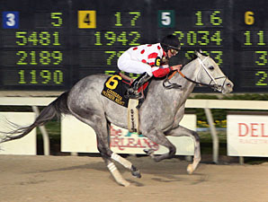Shezacrazygirl wins the 2010 Premier Night Starlet.