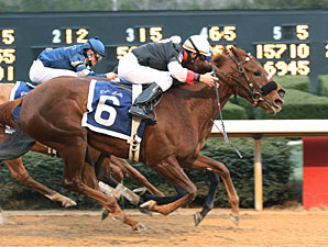 Shotgun Gulch wins the 2010 Dixie Belle.