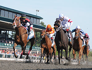 Shotgun Gulch wins the 2011 Vinery Madison.