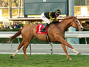 Shrinking Violet wins the Monrovia Stakes.
