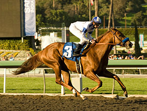 Sidney's Candy wins the 2010 San Vicente.