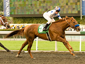 Sidney's Candy wins the 2010 San Felipe.