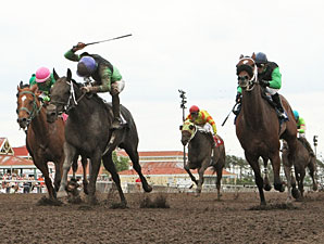 Signsealndeliver wins the 2013 Dark Star Stakes.