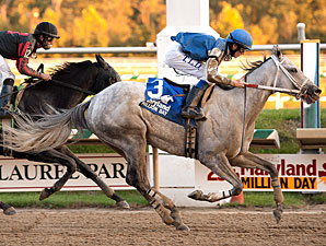 Silver Heart wins the 2010 Maryland Million Distaff Starter