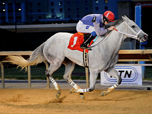 Silver Heart wins the 2012 Original Gold Stakes.