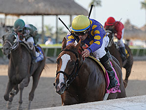 Sing Praises wins the 2014 Florida Sire Dr. Fager Stakes.