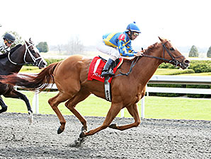 Sir Applesolutely wins an allowance optional claiming race at Keeneland, April 10, 2014