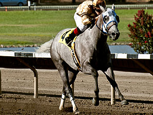 Sister Kate wins the 2013 California Governor's Cup Handicap.