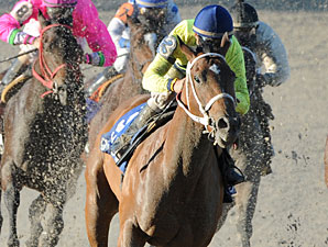 Sittin At the Bar wins the 2012 Louisiana Champions Day Lassie Stakes.