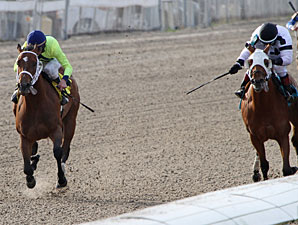 Sittin At the Bar wins the 2012 Louisiana Futurity - Filly Division.