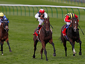 Siyouma wins the 2012 Sun Chariot
