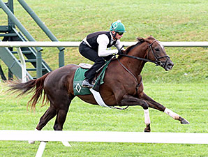 Size at Keeneland, October 9, 2014