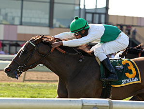 Ski Holiday wins the 2013 Mrs. Penny Stakes.