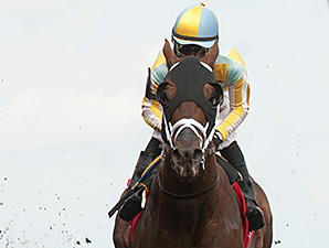 Sky Captain wins the 2014 Dominion Day Stakes.