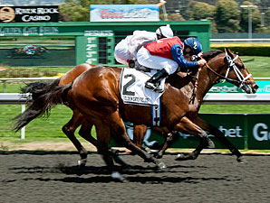 Skydreamin wins the 2013 Lost in the Fog Stakes.