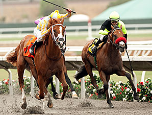 Skyway wins the Best Pal Stakes.