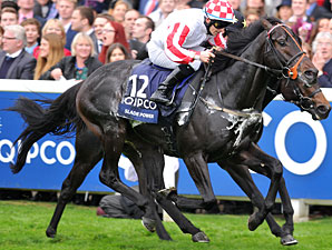 Slade Power wins the 2013 Qipco British Champions Sprint Stakes.