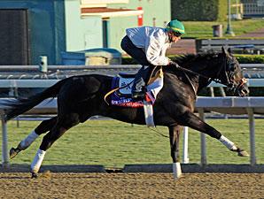 Slim Shadey at Santa Anita 10/28/2012.