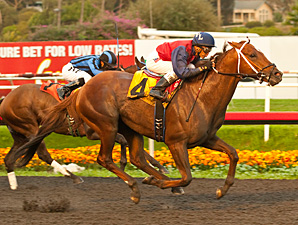 Smiling Tiger wins the Vernon O. Underwood Stakes (gr. III).